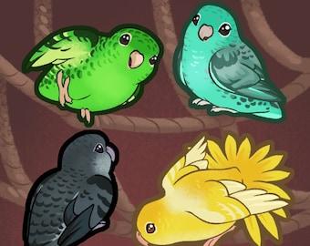 Lineolated Parakeet: Sticker Sheet