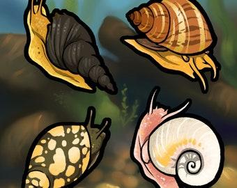 Aquarium Snails Holographic Sticker Sheet