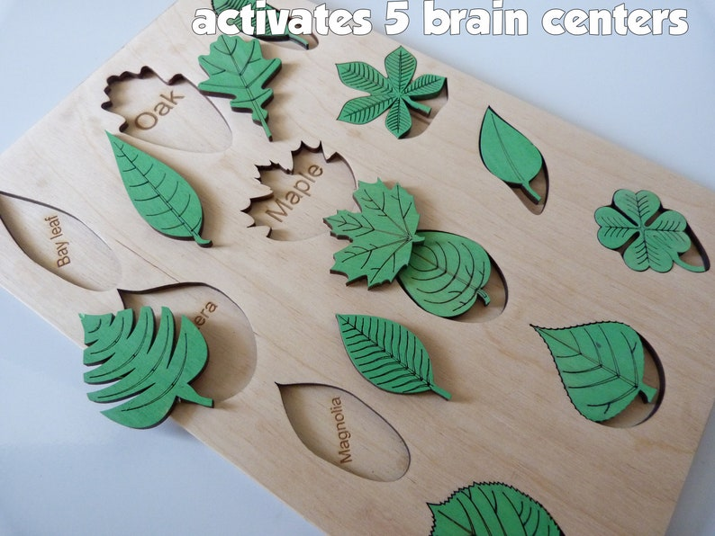 Leaf puzzle montessori toy toddler gift for baby Eco toys image 0