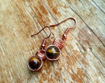 Tigers Eye Fish Hook Earrings