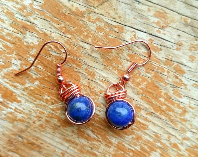 Lapis Lazuli Fish Hook Earrings