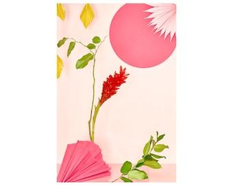 Still Life With Hawaiian Ginger Flower No. 7: Floral Print, Modern Art, Wall Hanging, Abstract Art, Decorative Art, Fine Art Photography