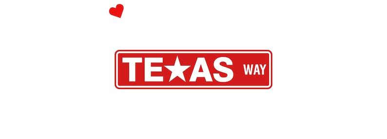 Texas Aluminum Street Sign  Texas Wall Art Decor   Texan image 0