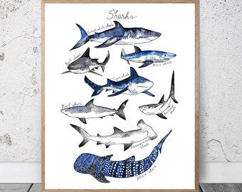 Shark Art Print Etsy