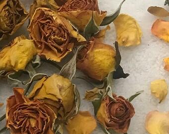 315654e321 Rose Buds aromatic Yellow Floribunda