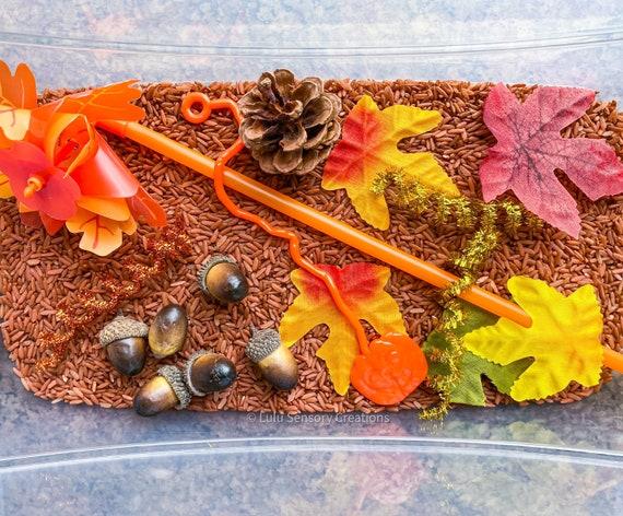 Autumn Sensory Kit