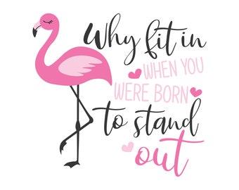 Flamingo sayings | Etsy