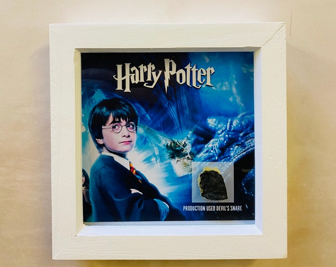 Shadow Box - Harry Potter Devil Snare Fragment