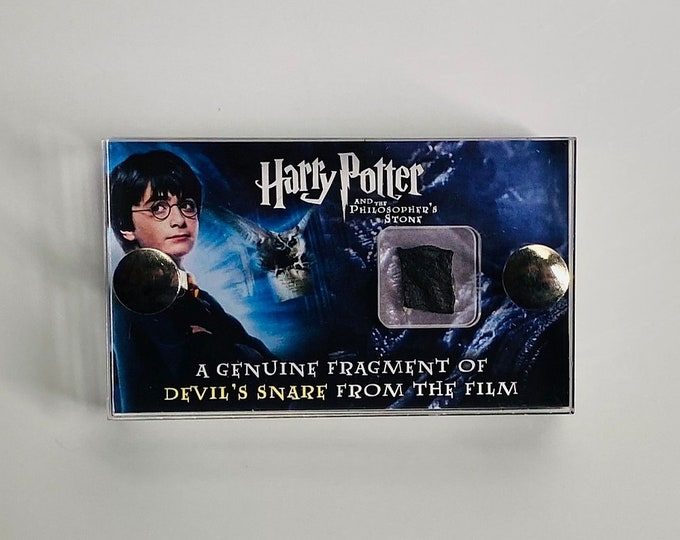 Mini Display - Harry Potter Devil Snare Fragment