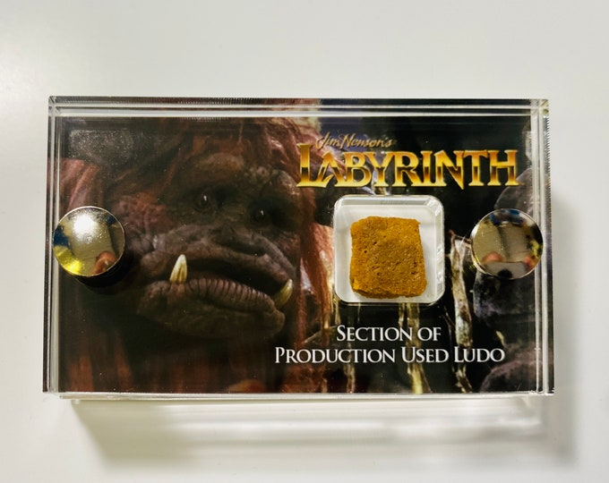 Mini Display - Labyrinth Production Used Section of Ludo