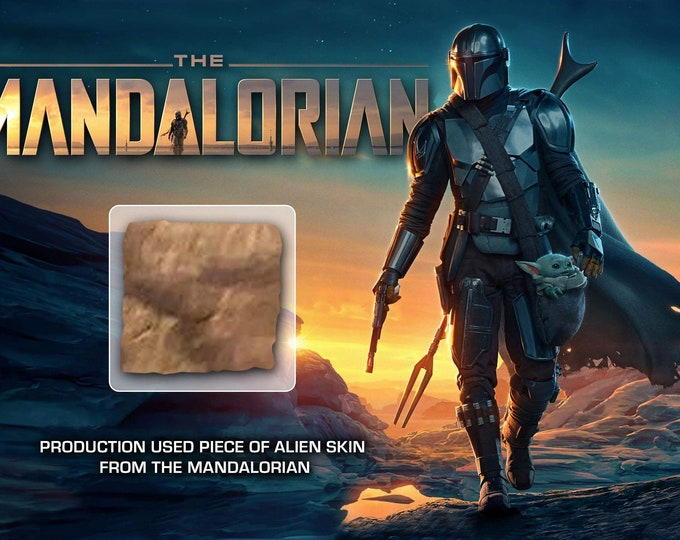 Large Display - Production Used Mandalorian Alien Skin