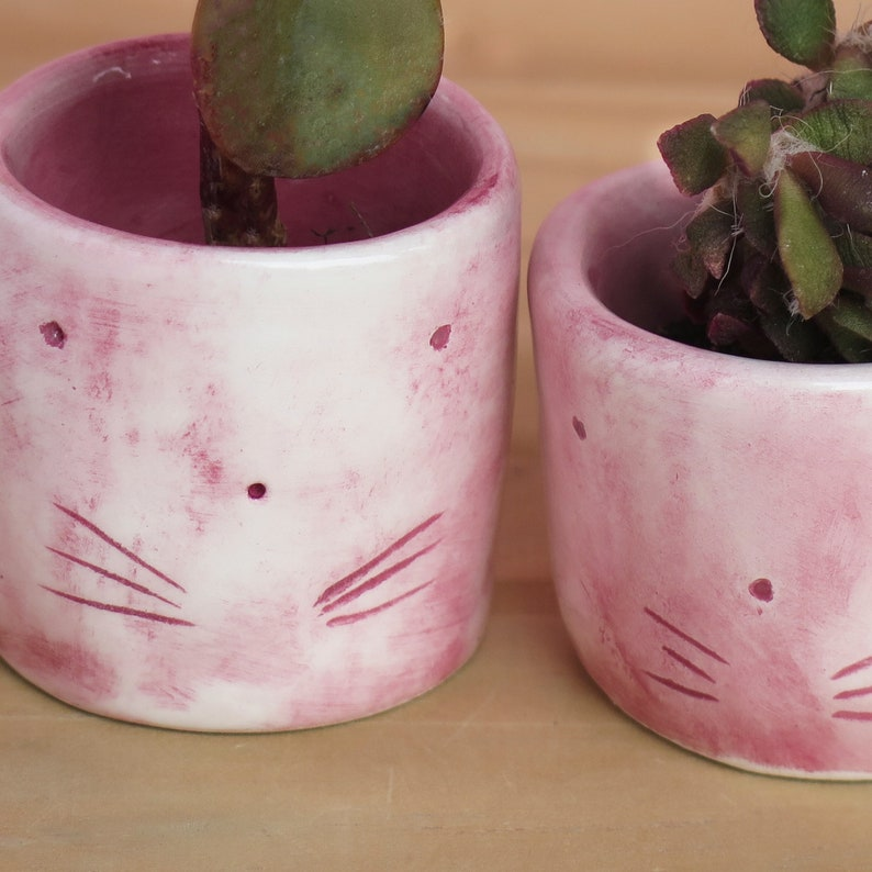 Pink Cat Planters for cat lover gift
