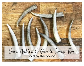 Deer Antler Long Tips U0026 Points C Grade   SOLD BY POUND   Jewelry, Craft,  Art, Floral, Accessories, Furniture, Rustic, Boho, Home Decor