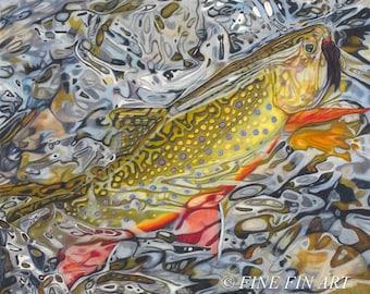 Glimmering Brookie 21.5 x 20.5 Limited Fine Art Print