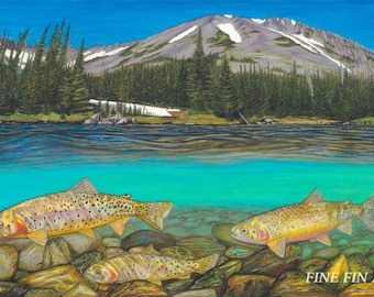 High Country Cutthroats 12.5 x 20 limited edition fine art print