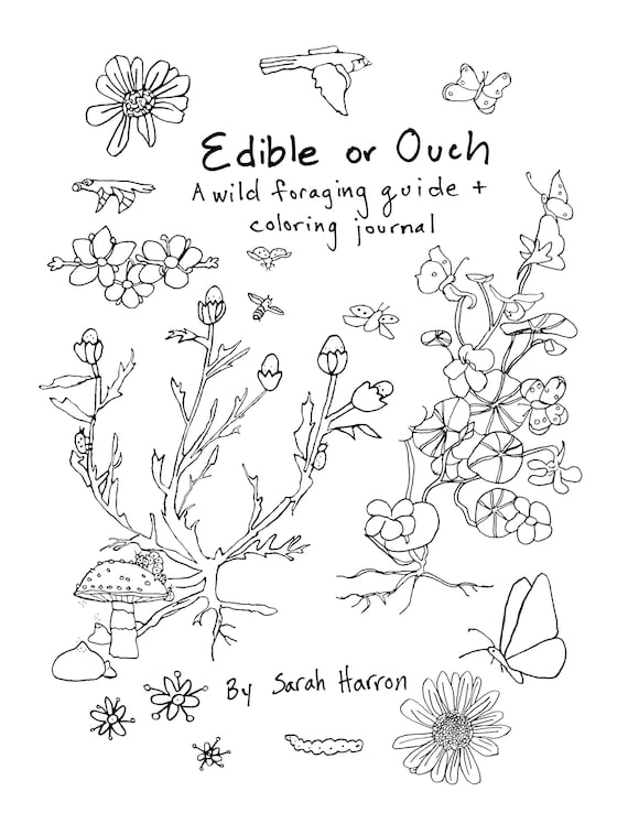 Coloring Book Foraging Flowers Wild Crafting Children Etsy