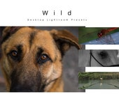 Desktop Lightroom Presets: Wild
