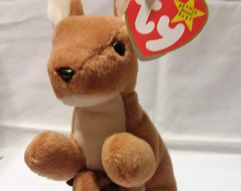 f0f30d85f20 Pouch beanie baby