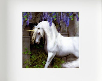 Unicorn and Wisteria Square Giclée Print Mounted and Framed in White.