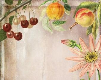 Ephemera Fruit, Flower, Orchard Junk Journal Scrapbook Digital Download 2 Sheets High Res A4 Paper