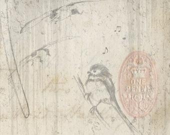 Ephemera Bird Doodle Sketches Junk Journal Scrapbook Digital Download 2 Sheets High Res A4 Paper