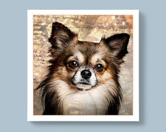 A Portrait Photo of a Chihuahua Breed of Dog, Blank or Personalised Message For Special Ones