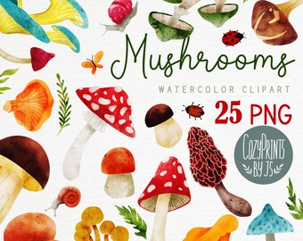 Watercolor Mushrooms Clipart. Fall PNG. Instant Download. Honey Mushrooms, Boletus, Honey Mushroom, Fly Agaric, Morel, Autumn Clipart.