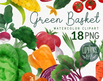 Watercolor vegetables. Garden Veggies PNG. Instant Download. Bell Pepper, Cucumber, Beet Root, Carrot, Tomato, Garlic, Onion, Cabbage