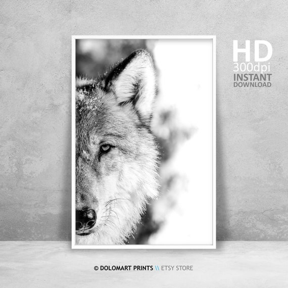 Wolf Forest Trees Vintage Art Print Poster A1 A2 A3 A4 A5