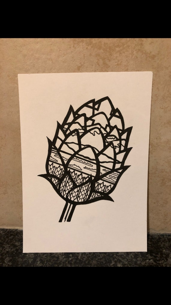 Alberta Hop Drawing