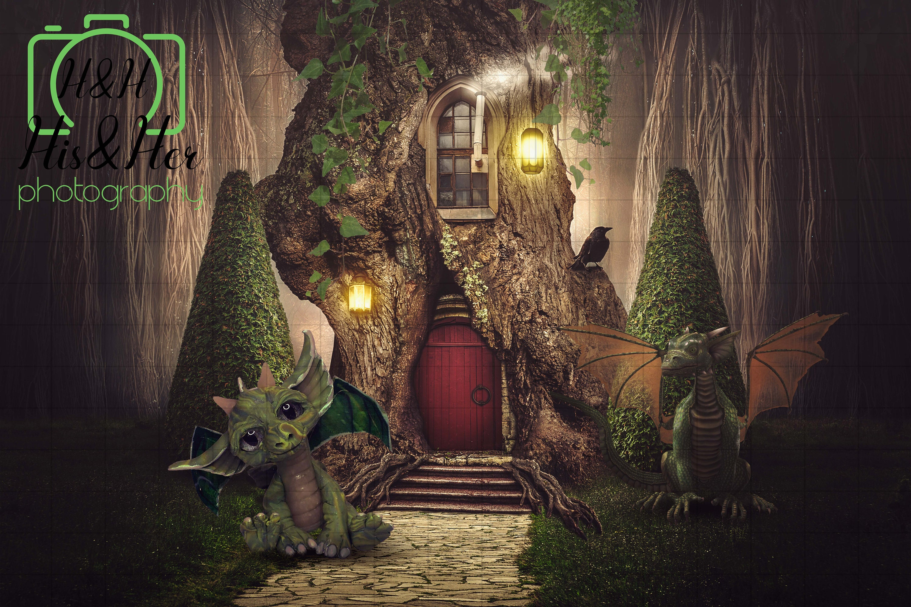 Baby Dragon Forest, Digital Background, Digital Backdrop, Digital Download,  Photoshop Background, Add Your Own Subject