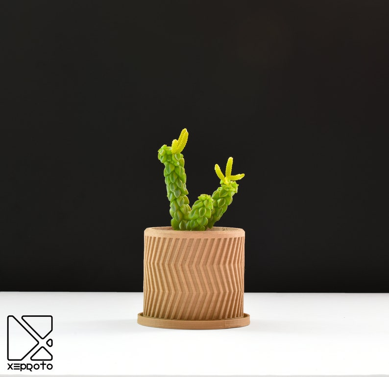 Indoor Planter  Succulent Pot  Cactus Pot  3D Printed using image 0