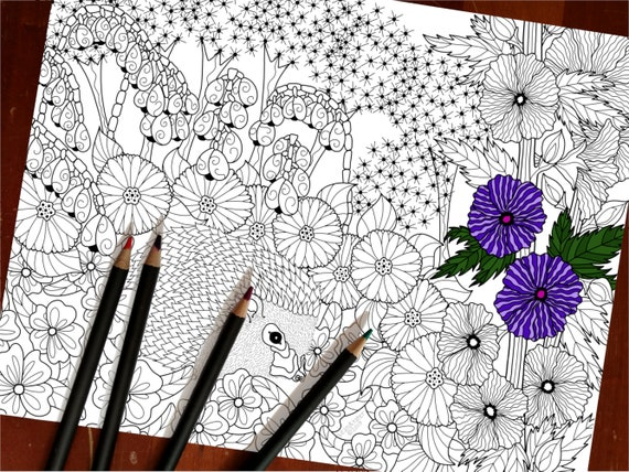 Tater Colouring Sheet - Pikmi Pops Coloring Pages PNG Image ... | 428x570