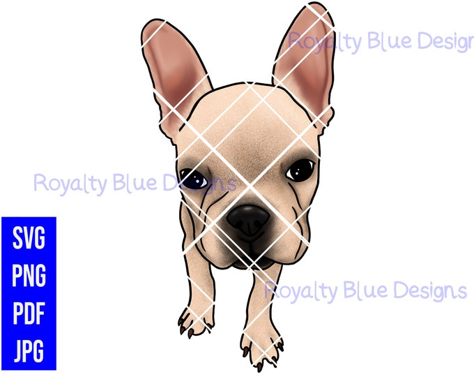 FRENCH BULLY, Bull Dog, png, svg, pdf, digital download, instant