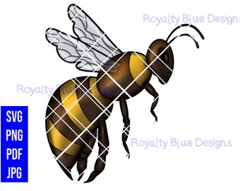 QUEEN BEE, Beehive png, svg, pdf, jpg, digital download, instant