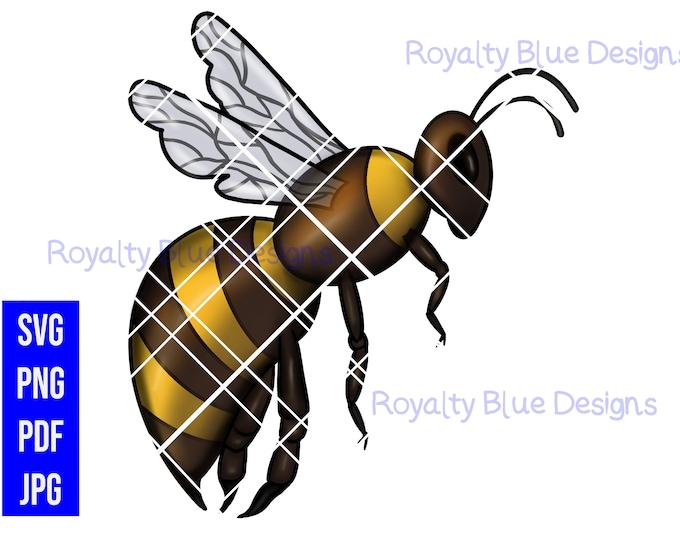 QUEEN BEE, Beehive png, svg, pdf, jpg, digital download, instant