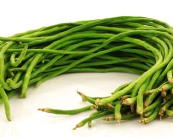 "2/10/20/50 grams Sitaw / Yard Long Bean / 长豆 / Chang Dou / đậu dài / Asparagus bean/ Snake Bean ""Yu Long"" (For 2021 Season)"