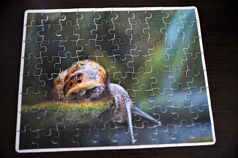 Cute Snail 80 Piece Puzzle image 0