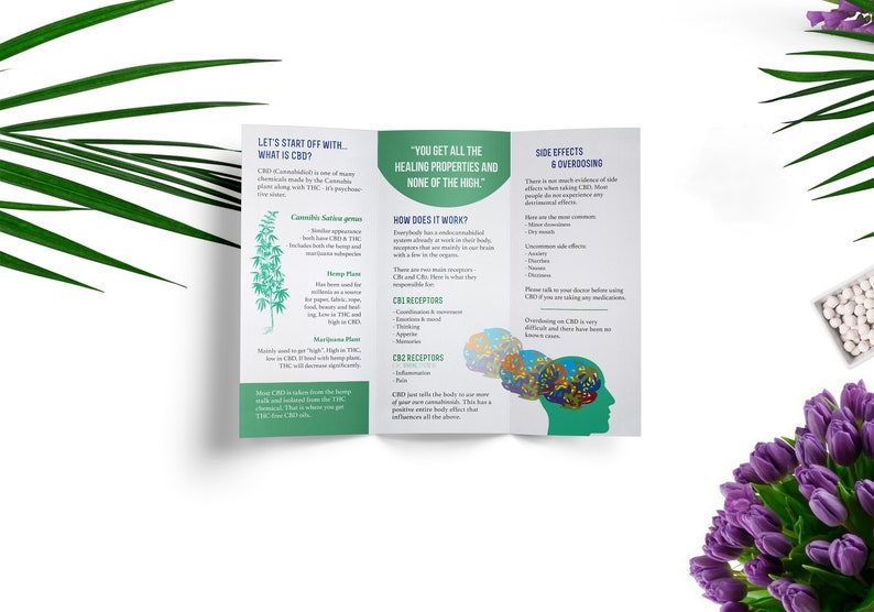 photo relating to Printable Tri Fold Brochures identify CBD Informational Trifold Brochure PRINTABLE, Electronic Brochure, Refreshing Very low Commercial Hemp Useful CBD Company Cannabidiol Oil