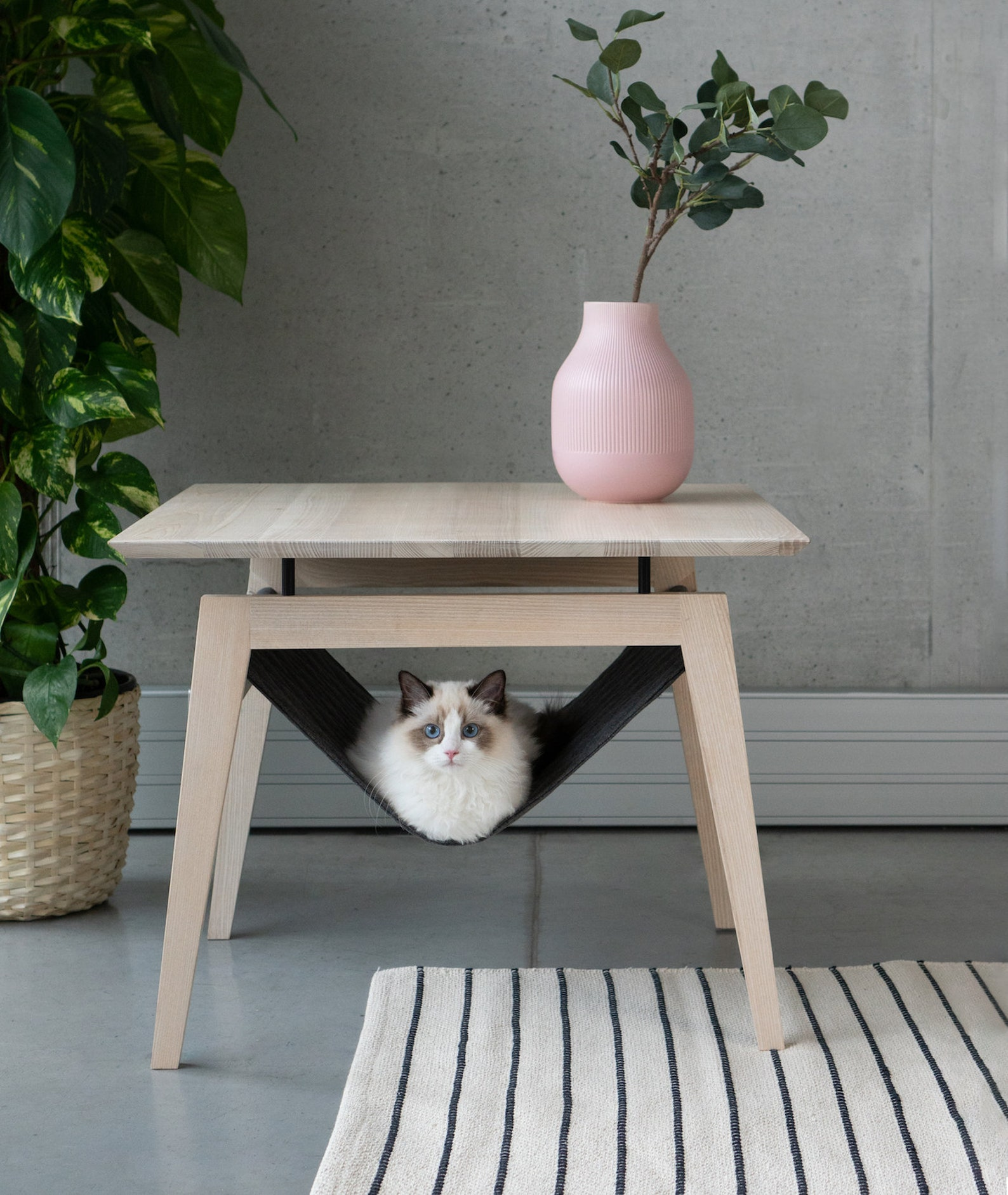 scandinavian cat bed
