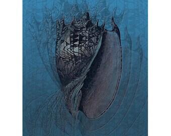Deep Sea Boogie   Sea Shell   Wall Art   Blue   Undersea Water Creature   Vibrating Pattern Echoes   Digital Art Print by Brad Mager