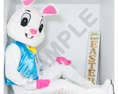 Easter Bunny in the Box P...