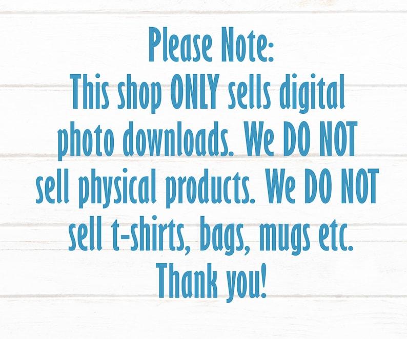 White T Shirt Bella Canvas 3001 Mockup Unisex Shirt Yellow  T Shirt Flat Shirt Mockup Shirt Flat Lay Real Photo Top View Shirt Blank Photo