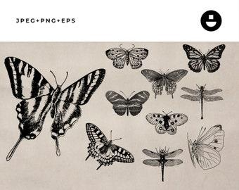 Vintage Animal Illustrations of Butterflies - Instant Download Clipart Set 14