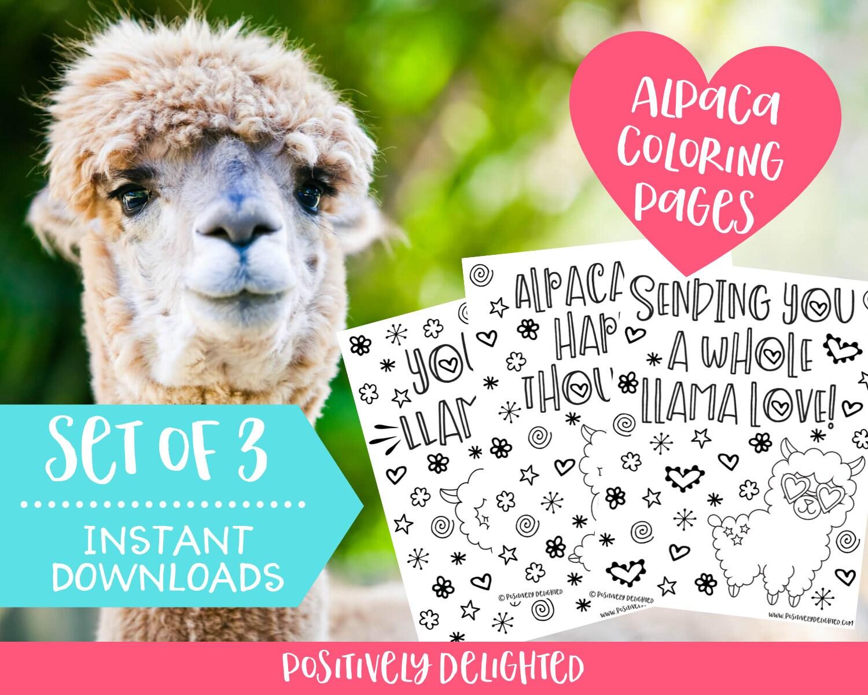 Alpaca Llama Coloring Pages Printable Llama Birthday Party Etsy