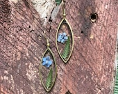Real pressed fern and forget me not gold earrings