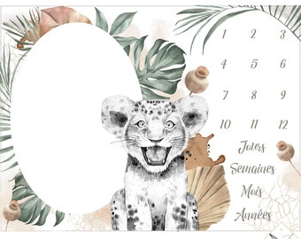 Preorder deadlines 3 to 4 weeks fabric Lion savannah panels for carpet step, carpet photo, 75x100cm 100% cotton premium Oeko-Tex