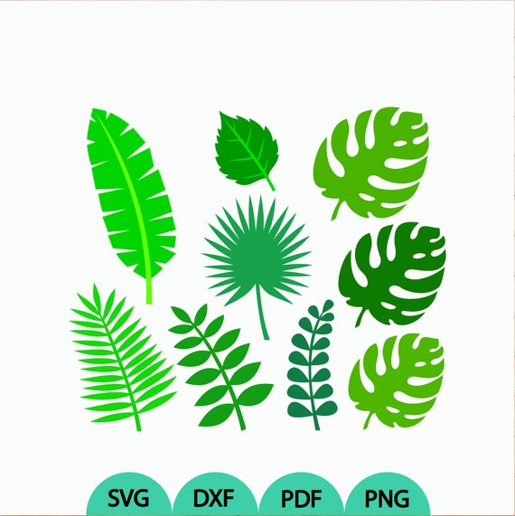 Tropical Leaves Svg 8 Jungle Tropical Leaves Leaf Svg Banana Etsy Check out our tropical leaf svg selection for the very best in unique or custom, handmade pieces from our craft supplies & tools shops. tropical leaves svg 8 jungle tropical leaves leaf svg banana leaves svg tropical leaves clipart cut files svg dxf pdf png