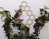 Honeycomb Hanging Plant Trellis 3 piece set Three colors