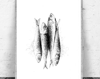 POSTER SARDINES Format A4 - Culinary illustration in Chinese ink